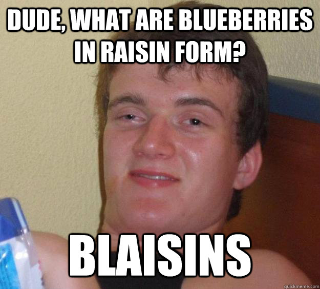 dude what are blueberries in raisin form blaisins - 10 Guy