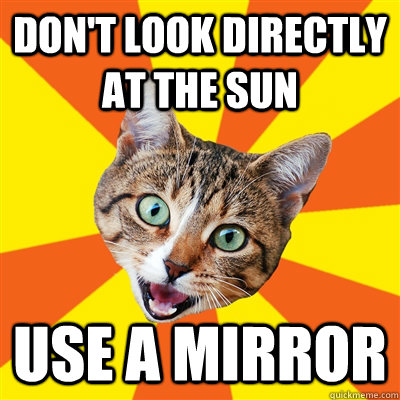 dont look directly at the sun use a mirror - Bad Advice Cat