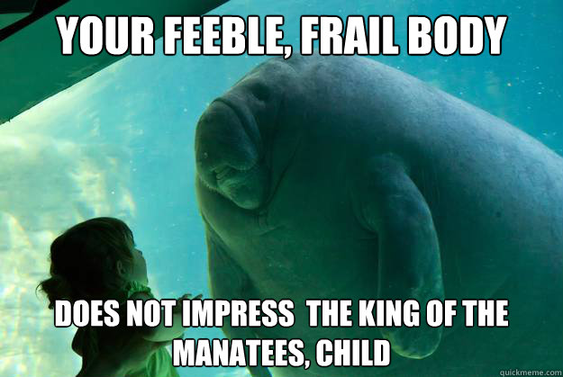 your feeble frail body does not impress the king of the m - Overlord Manatee