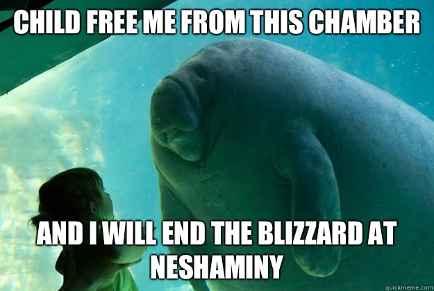 Child free me from this chamber and i will end the blizzard  - Overlord Manatee