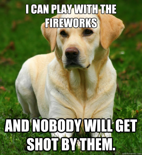 i can play with the fireworks and nobody will get shot by th - Dog Logic