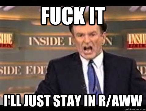 fuck it ill just stay in raww - Bill OReilly Fuck It