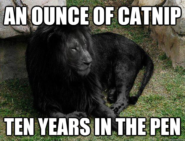 an ounce of catnip ten years in the pen - Black Lion Problems