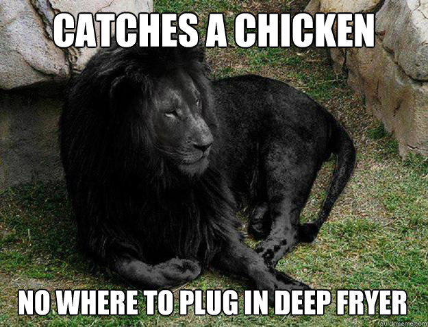 catches a chicken no where to plug in deep fryer - Black Lion Problems