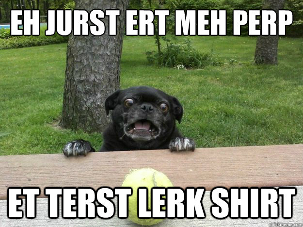 eh jurst ert meh perp et terst lerk shirt - Berks Dog