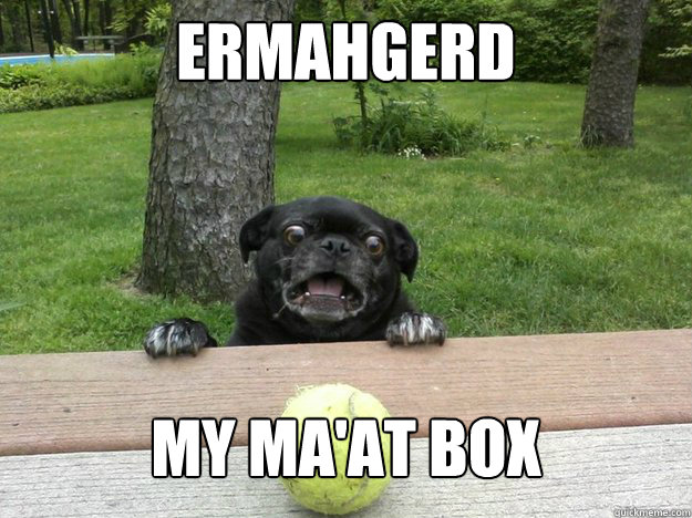 ermahgerd my maat box - Berks Dog