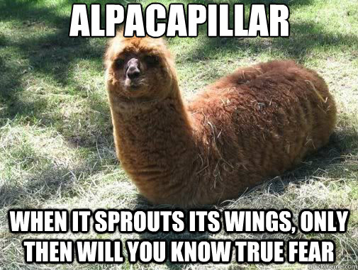 alpacapillar when it sprouts its wings only then will you k - Alpacapillar