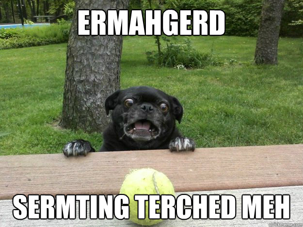 ermahgerd sermting terched meh - Berks Dog