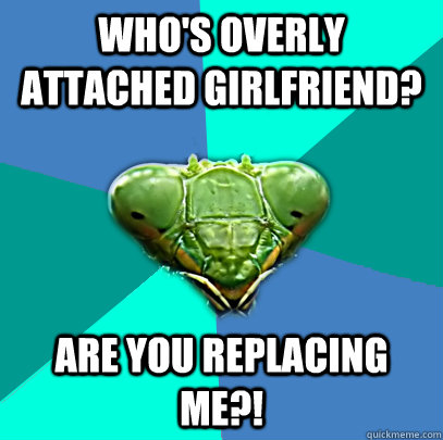whos overly attached girlfriend are you replacing me - Crazy Girlfriend Praying Mantis