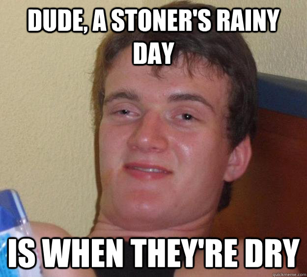 dude a stoners rainy day is when theyre dry - 10 Guy