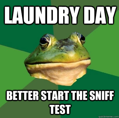 laundry day better start the sniff test  - Foul Bachelor Frog