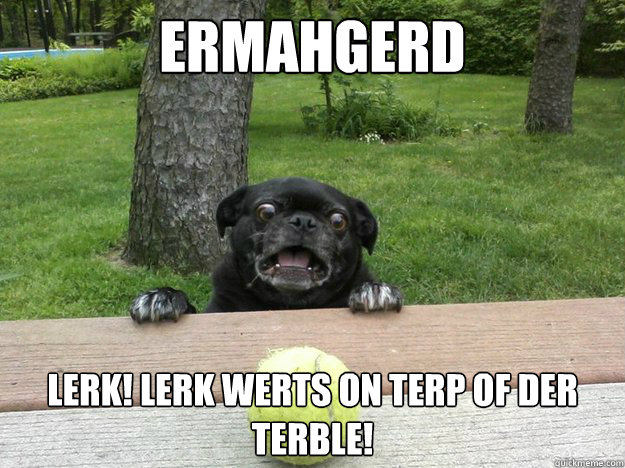 ermahgerd lerk lerk werts on terp of der terble - Berks Dog