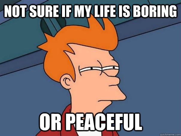 not sure if my life is boring or peaceful - Futurama Fry