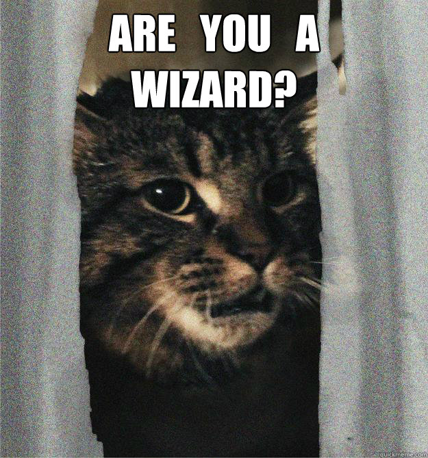 are you a wizard  - kittywizard2