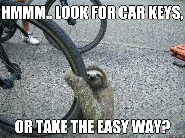 hmmm look for car keys or take the easy way - LuvSloth