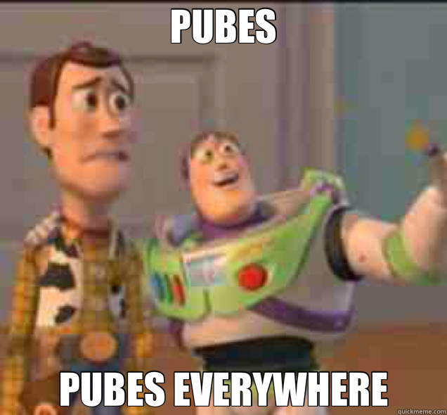 PUBES PUBES EVERYWHERE - buzz