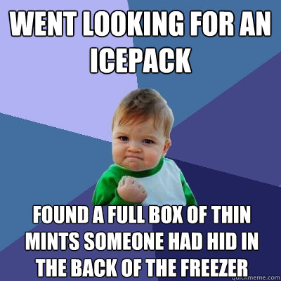 went looking for an icepack found a full box of thin mints s - Success Kid