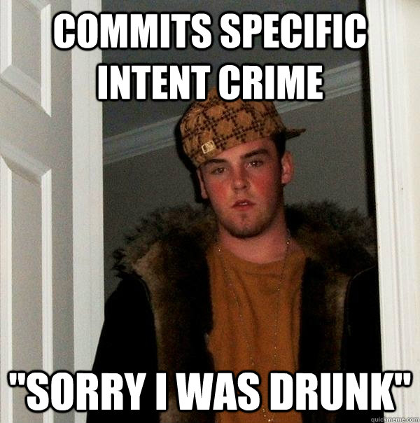 commits specific intent crime sorry i was drunk - Scumbag Steve