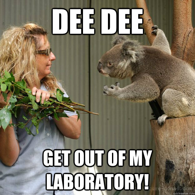 dee dee get out of my laboratory - 