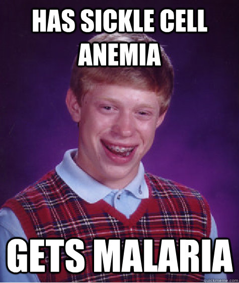 has sickle cell anemia gets malaria - Bad Luck Brian