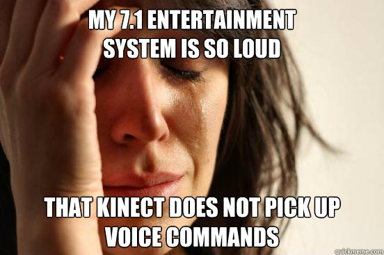 my 71 entertainment system is so loud that kinect does not - First World Problems