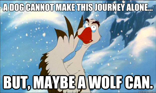a dog cannot make this journey alone but maybe a wolf ca -