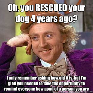 oh you rescued your dog 4 years ago i only remember asking - Condescending Wonka
