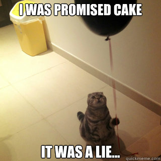 i was promised cake it was a lie - Sad Birthday Cat