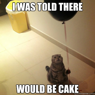 i was told there would be cake - Sad Birthday Cat