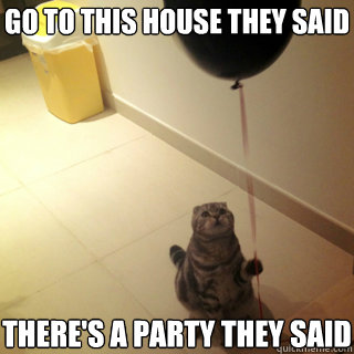 go to this house they said theres a party they said - Sad Birthday Cat