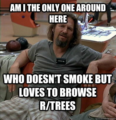 am i the only one around here who doesnt smoke but loves to - The Dude
