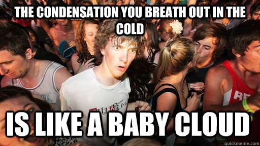 the condensation you breath out in the cold is like a baby c - Sudden Clarity Clarence