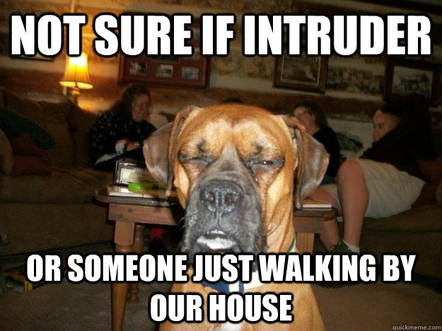 not sure if intruder or someone just walking by our house -