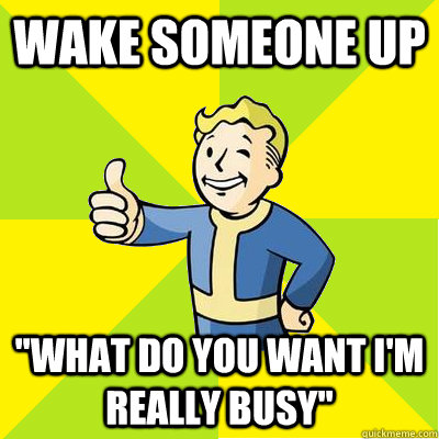 wake someone up what do you want im really busy - Fallout new vegas