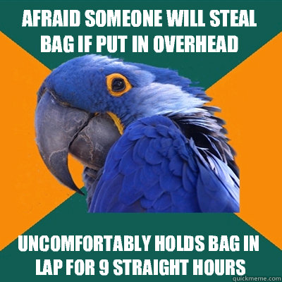 afraid someone will steal bag if put in overhead compartment - Paranoid Parrot