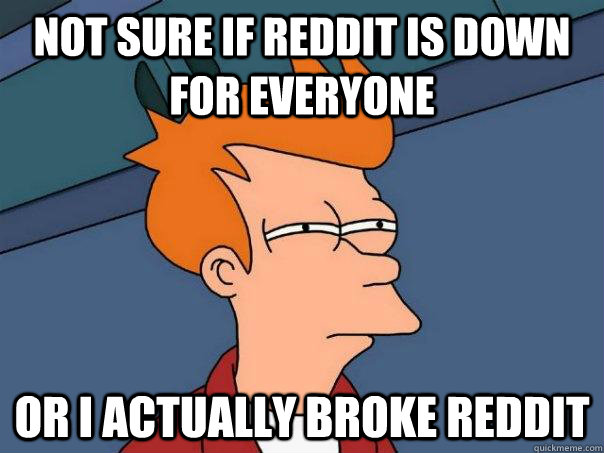 not sure if reddit is down for everyone or i actually broke  - Futurama Fry