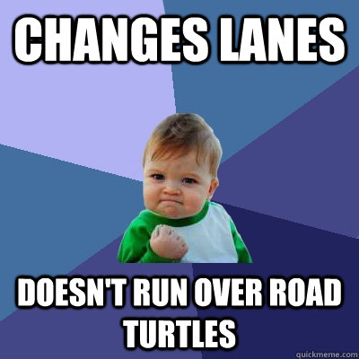 changes lanes doesnt run over road turtles - Success Kid