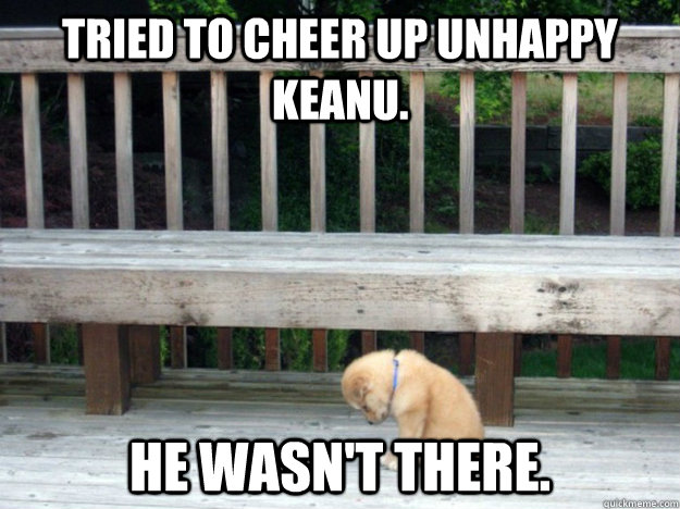 tried to cheer up unhappy keanu he wasnt there - Unlucky puppy