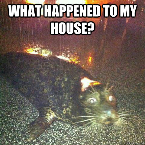what happened to my house  -