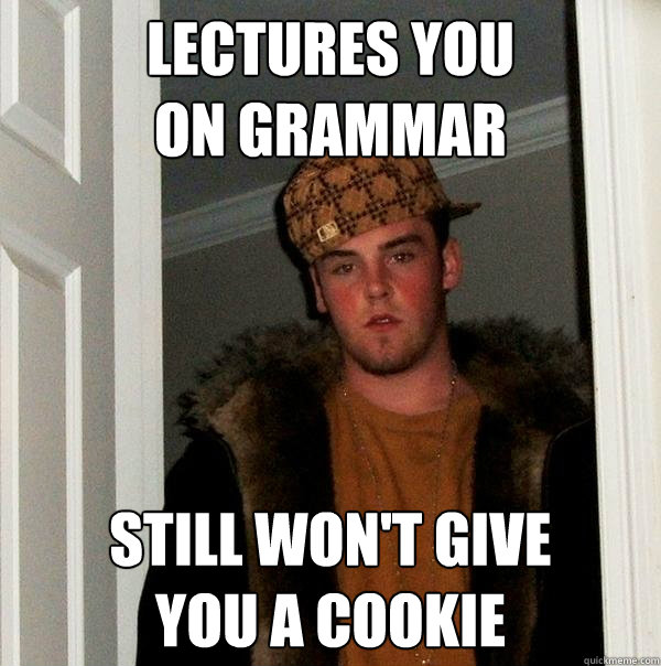 lectures you on grammar still wont give you a cookie - Scumbag Steve
