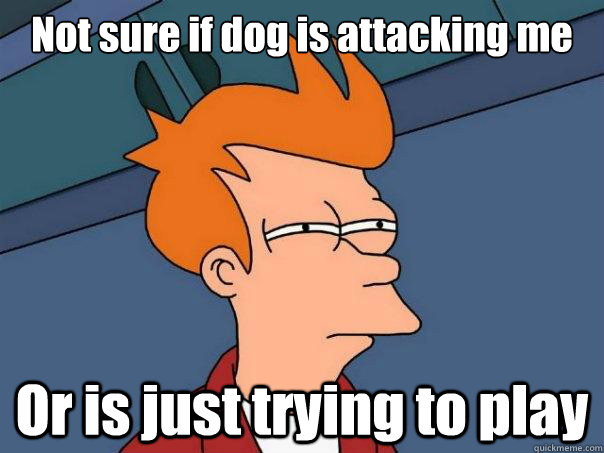 not sure if dog is attacking me or is just trying to play - Futurama Fry