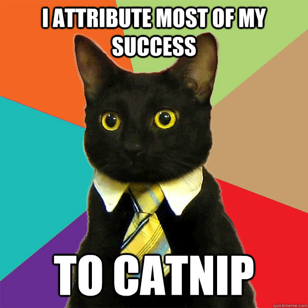 i attribute most of my success to catnip - Business Cat