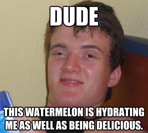 dude this watermelon is hydrating me as well as being delici - 10 Guy