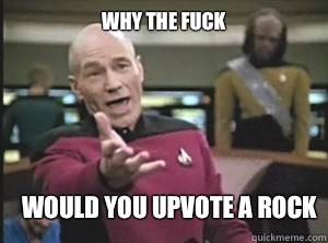 why the fuck Would you up vote a rock - Annoyed Picard