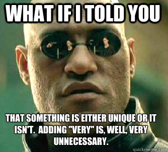 what if i told you that something is either unique or it isn - Matrix Morpheus