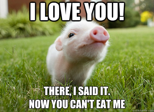 Chicken And The Pig Meme: I Love You! There, I Said It. Now You Can't Eat Me