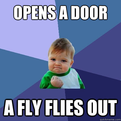 opens a door a fly flies out - Success Kid