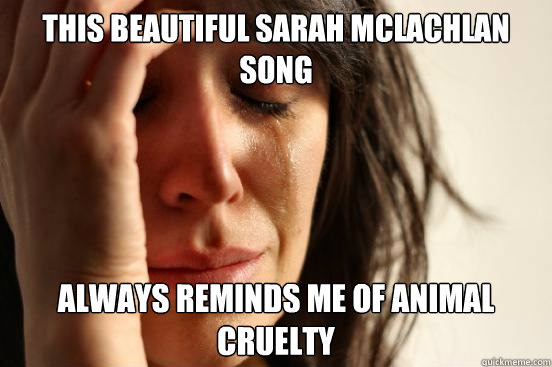 this beautiful sarah mclachlan song always reminds me of ani - First World Problems