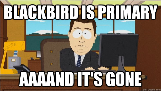blackbird is primary aaaand its gone - aaaand its gone