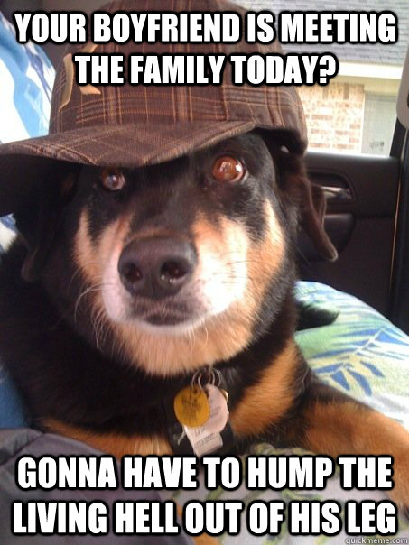 your boyfriend is meeting the family today gonna have to hu - Scumbag dog
